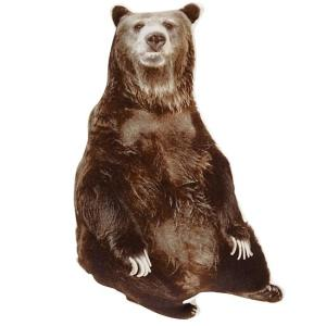 bear-filled-throw-pillow