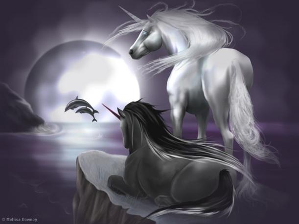 unicorns-5-magical-animal